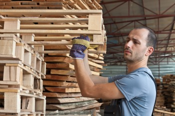 Man arraging beech pallets in a warehouse, horizontal shot